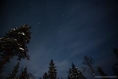 IMG_2879 (F@bione©) Tags: lapponia lapland marzo 2017 husky aurora boreale northenlight circolo polare artico rovagnemi finalndia finland