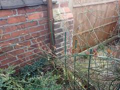 2017_04_110014 (Gwydion M. Williams) Tags: coventry britain greatbritain uk england warwickshire westmidlands chapelfields sirthomaswhitesroad