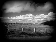 Woodhenge (Ken-Zan) Tags: woodhenge skåne kenzan ljunghav