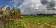 Blick in die Reischenau (Robbi Metz) Tags: deutschland germany bayern bavaria schönebach landschaft landscape natur nature feld hecke wolken clouds himmel sky bäume trees canoneos