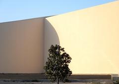 tunis_minimal_DSCN3694 (ghoermann) Tags: tunisia minimalism architecture