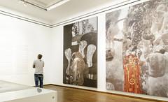 De espaldas a Klimt (Jo March11) Tags: viena austria vienna wien österreich klimt pintura arte museo exposición cultura color ieletxigerra museoleopold leopold secesion artemoderno idoiaeletxigerra eletxigerra canon canoneos
