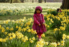 Setina ... (Kindergartenkinder) Tags: kindergartenkinder annette himstedt dolls setina schloss herten osterglocken narzissen blume frühling