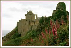 Fort la Latte (myvalleylil1( absente jusqu'au 27 avril)) Tags: france bretagne château architecture fleurs digitale