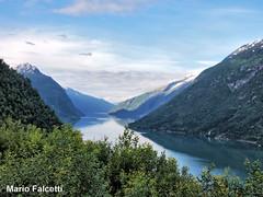 Norway: between Skei and Sogndal (mariofalcetti) Tags: norvegia norway fiordo water acqua landscape mountain fjord tree alberi sky cielo