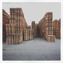 _stacks (fot_oKraM) Tags: holz wood paletten palette pallet pallets lager storage den ham overijssel nederland