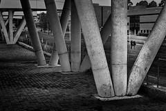 (Leon F. Cabeiro) Tags: leica m2 voigtlander 50 15 asph vm nokton kodak tmax 400 hc110 stand santiago compostela galiza galicia street