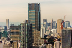 IMG_2658 (Evgeny Gorodetskiy) Tags: birdseye autumn city overlook skyscrapper tokyo japan travel minatoku tōkyōto япония jp