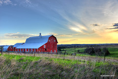 Golden Barn_175169 (rjmonner) Tags: barn sunrise windmill tower fence iowa midwest rural red barndoor windows cupola shed farm farming field sky agriculture agronomy cornblet windmilltower valley hills rollinghills green farmland agcultrual agronomic blue clouds trees