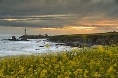 Pigeon Point (Erick Castellón) Tags: seascape sunset seaside clouds waves oceanscape landscapephotography lighthouse