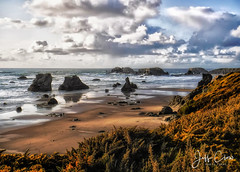 Along the Oregon Coast (Jeff Clow) Tags: 2017 april jeffclowphototours oregon landscape nature offthebeatenpath offthebeatentrack offthegrid outdoors outside scenery scenics travel
