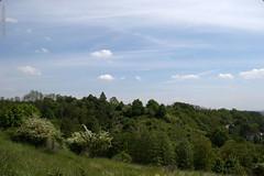 DSC_2603 (oria77) Tags: dolina bolechowicka krakow valley woodland poland