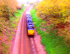 A Model 6L70 Crewe - Sizewell Train, approaching Woodbridge, in the cutting at Broomheath. 11 04 2014 tiltshift (pnb511) Tags: train suffolk diesel shift railway trains coal tilt locomotives woodbridge sizewell drs class37 rurallandscape eastsuffolkline