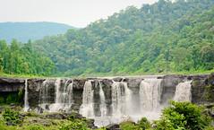 Gira Waterfalls near Saputara ([s e l v i n]) Tags: india green fall nature water waterfall h2o waterfalls greenery gira gujarat saputara selvin girawaterfalls