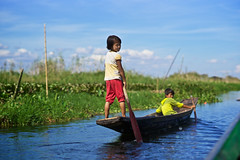 Burmese children rowing on traditional barque, Inle lake, Shan State, Burma (Alex_Saurel) Tags: travel portrait people lake detail green nature water silhouette river children asian boat movement divers scans asia raw day child time outdoor burma altitude traditional young culture photojournalism documentary lac style scene transportation barefoot type vegetation rowing myanmar asie nautical tradition fullframe ethnic position indigenous barque birmanie fullbody birmania estetic ethnique qualite ethnie lifescene 35mmprint imagetype photospecs stockcategories pleinformat planart1485 85mmf14za indigene
