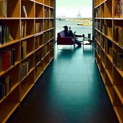 biblioteca universitaria (mluisa_) Tags: silhouette mare libri malmo studia svezia librerie concentrazione studentessa bibliotecauniversitaria rilassatezza computerportatile