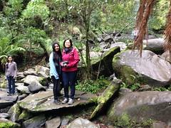 lorne 365 (raqib) Tags: holiday nature water trekking trek waterfall hiking victoria hike falls bushwalking vegetation rc lorne iphone erskine erskinefalls waterfallaustralia