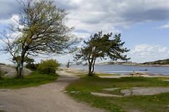 Left_Overs 071.20, Foten, Norway (Knut-Arve Simonsen) Tags: norway norge norden norwegen noruega coastline scandinavia norvegia oslofjorden onsy stfold fredrikstad norvge   foten       sydnorge