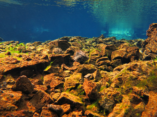 Iceland 2014 - Silfra dive - IMG_0549