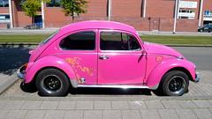 Volkswagen 113021 Beetle - 1969 (oerendhard1) Tags: pink classic 1969 car vw bug volkswagen beetle kfer kever maggiolino 113021
