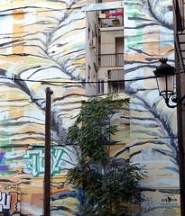 En voici un dtail (Barbara DALMAZZO-TEMPEL) Tags: valencia facade spain front espagne faade valence