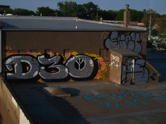 D30 (Billy Danze.) Tags: chicago graffiti fuck d30 wyse
