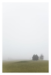 fog (thomasrixner) Tags: light tree green fog photoshop canon golf haze day nebel czech mark tschechien minimal ii 5d easy grn reise grenze kurzreise