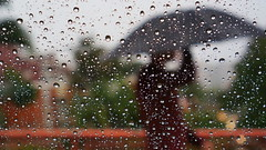 LASTOFTHISSERIES (fabio lf petry) Tags: brazil rain umbrella droplets drops dof bokeh favorites portoalegre pop rainy raindrops popular favs riograndedosul