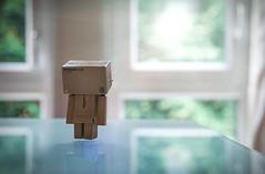 Morning levitation. (Matt_Briston) Tags: morning light levitation danbo