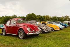 The Beetles (Jeff_B.) Tags: show cars car rainbow automobile connecticut beetle ct beatle carshow timemachine guilford beattle volkswagobn