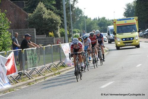 Geel Oosterlo  (316)