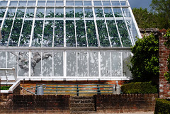 West Dean Gardens - Sussex (Mark Wordy) Tags: westsussex greenhouse wateringcan figtree walledgarden chichester westdeangardens