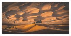 Nameless chariots (Khun Jeremy) Tags: sony ilce7rm2 sel70200g desert uae dubai sharjah fossilrock