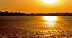 'GOLD' (Bob's Digital Eye) Tags: bobsdigitaleye canon canonefs55250mmf456isstm flicker flickr ice laquintaessenza lakescape landscape outdoor silhouette sunset t3i winter