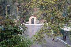Ψίνθος (Psinthos.Net) Tags: ψίνθοσ psinthos march spring μάρτησ μάρτιοσ άνοιξη φύση nature springstorm ανοιξιάτικηκαταιγίδα καταιγίδα μπόρα storm raining βρέχει βροχή rain road δρόμοσ wetroad βρεγμένοσδρόμοσ chapel εκκλησάκι άγιοσνικόλασ άγιοσνικόλαοσ saintnicolas cross σταυρόσ γεφύρι πεζοδρόμιο sidewalk pavement πλακόστρωτο βρύση βρύσηψίνθου βρύσηψίνθοσ περιοχήβρύση vrisi vrisiarea vrisipsinthos planetree πλάτανοσ δέντρο tree ευκάλυπτοσ eucalypt eucalypts ευκάλυπτοι αγροτικόσδρόμοσ ruralroad greens χόρτα field χωράφι βροχερήμέρα rainingday valley psinthosvalley κοιλάδα κοιλάδαψίνθου κοιλάδαψίνθοσ