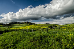 Landscape (Fabio Cafà) Tags: sicilia sicily fields field wow nicepic picture valguarnera nikon d7000 fabiocafa green country sky clouds