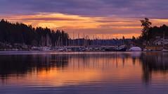 Evening at Gig Harbor, WA. (Sveta Imnadze) Tags: landscape sunset gigharbor wa pacificnorthwest reflection mtrainier