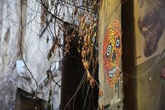 (Aurelia Li) Tags: berlin germany graffiti streetart scheunenviertel hausschwarzenberg skull