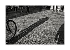 ... (ángel mateo) Tags: ángelmartínmateo ángelmateo füssen baviera alemania germany bicicleta sombra shadow bike blancoynegro monocromo blackandwhite monochrome