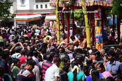 Panguni Utsavam 2017 , Kapaleeswarar Temple , Mylapore . (Kapaliadiyar) Tags: kapaliadiyar kapaleeswarartemplemylapore panguniutsavam panguniperuvizaa chariot thaer karpagambal
