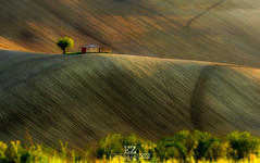 Paesaggio Marchigiano (emanuelezallocco) Tags: marche italy landscape panorama colline hills light sunset tramonto raggio sole ray sun green nature natura beauty relax waves