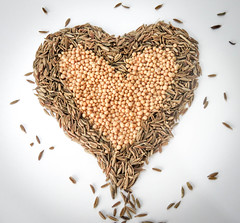 Sewing the Seeds of Love [Explored] (kateiles1) Tags: macrounlimited macrodreams hmm mondays macro sewingtheseed seedsoflove hearts love mustard cumin seeds macromondays