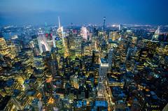 NY Skyline (seedosip) Tags: nikond7000 usa ny
