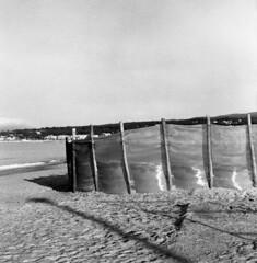 8604.Beach (Greg.photographie) Tags: mamiya c33 sekor 80mm f28 film analog foma fomapan 400 r09 beach plage moyenformat mediumformat 6x6 stcyr