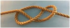"""Noeud """"Lacs d'Amour"""" (Pi-F) Tags: noeud corde héraldique amarre amour lac symbole décor batelier texture groupropes"""