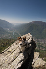 Monte Fajé (Naiade Photography) Tags: 2017 d610 montagna nikon luoghi montefajé mountain rizzo jackrussell terrier jrt dog pinkladies trekking