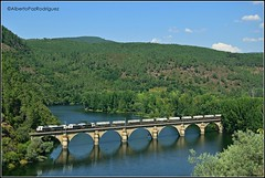Rairos. (pazalberto269) Tags: spain photography trainspotting renfe galicia rairos nikon d5300 amazing bridge river calidade