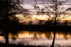 Sunset reflection (Maria Eklind) Tags: horizon ribersborg sunset nature himmel öresundsparken sweden outdoor spegling ribban reflection beach öresund malmö strand ribersborgsstranden ocean sun solnedgång sunlight water sky horisont solljus skånelän sverige se