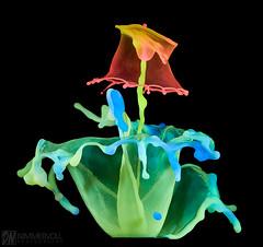 Spiral Nozzle (Daniel_Nimmervoll) Tags: liquidart waterdrop highspeed spiral nozzle nimmervoll fluoreszent water drop droplet fountain