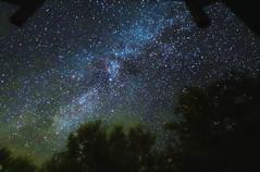 Milky way (picturesque-y) Tags: japan milkyway kamikochi forest night stars lights landscape sky skyline dark midnight colors glitter starlight bright